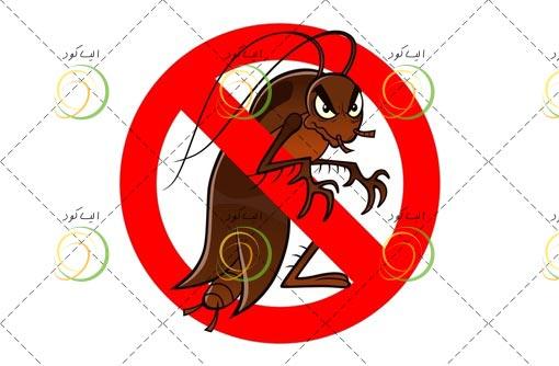 مبارزه با حشرات خانگی